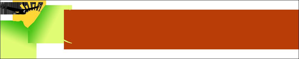 feel peru roads logo 2